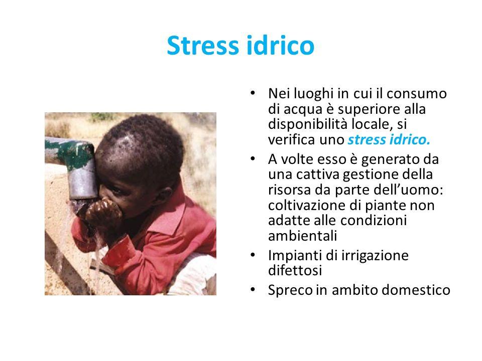 Stress idrico Nei luoghi in cui il consumo di acqua è superiore alla disponibilità locale, si verifica uno stress idrico. A volte esso è generato da u