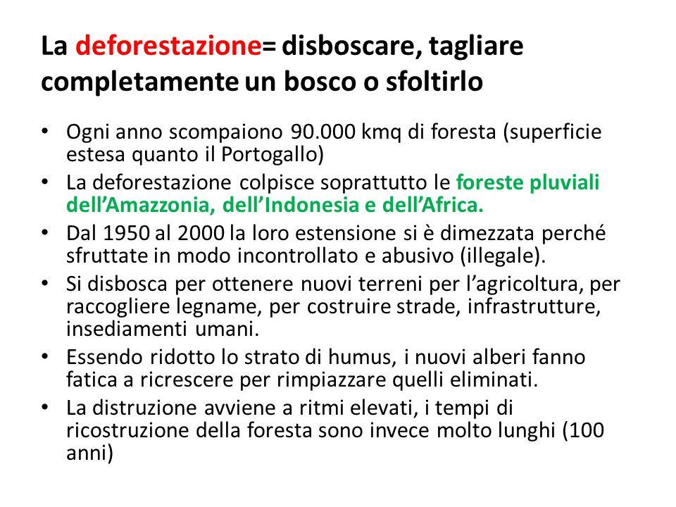 La deforestazione= disboscare, tagliare completamente un bosco o sfoltirlo Ogni anno scompaiono 90.000 kmq di foresta (superficie estesa quanto il Por