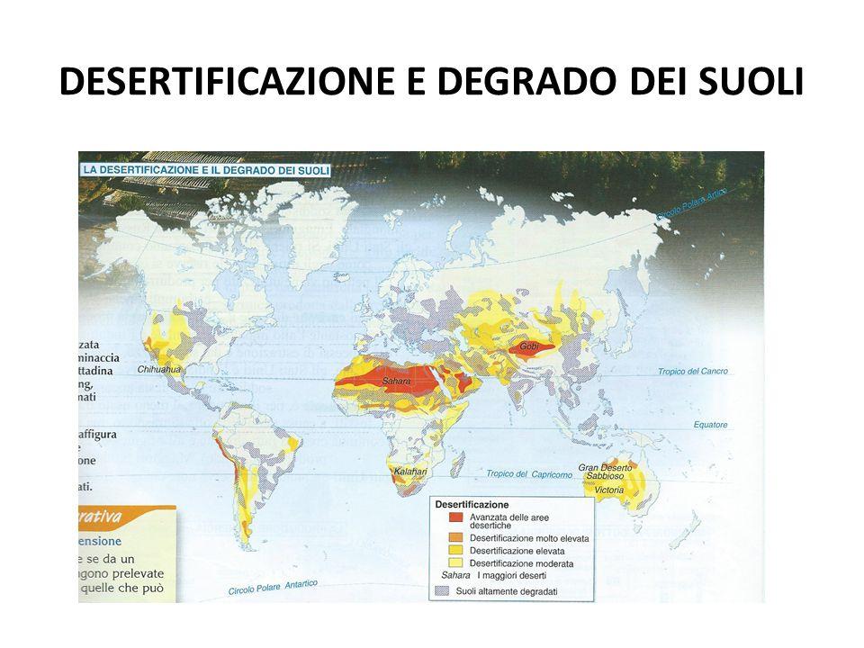 DESERTIFICAZIONE E DEGRADO DEI SUOLI