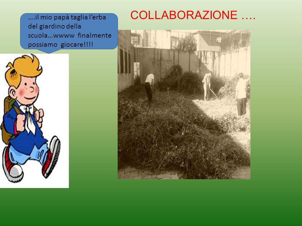 ….il mio papà taglia lerba del giardino della scuola…wwww finalmente possiamo giocare!!!.
