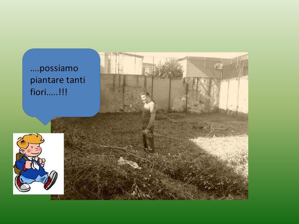 ….possiamo piantare tanti fiori…..!!!