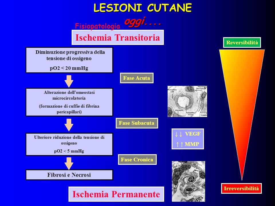 Ischemia Transitoria Diminuzione progressiva della tensione di ossigeno pO2 < 20 mmHg Alterazione dellomeostasi microcircolatoria (formazione di cuffi