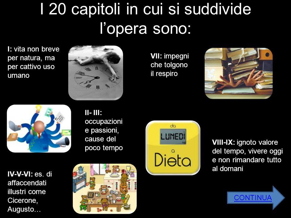 I 20 capitoli in cui si suddivide lopera sono: II- III: occupazioni e passioni, cause del poco tempo IV-V-VI: es. di affaccendati illustri come Cicero
