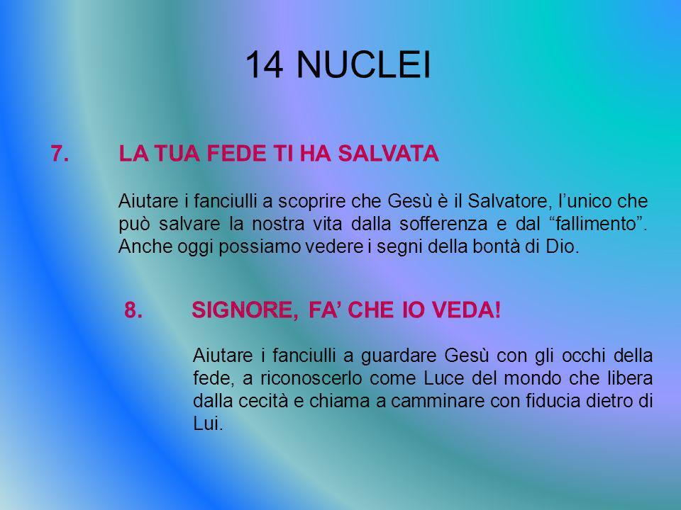 14 NUCLEI 7.