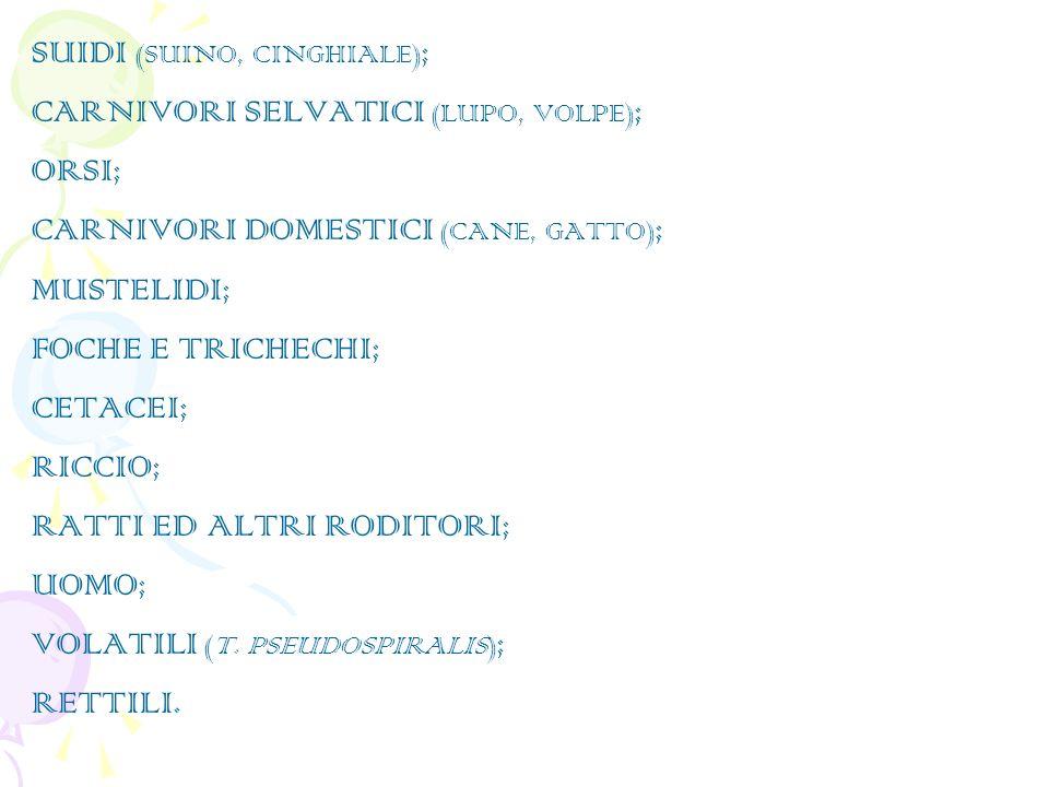 SUIDI (SUINO, CINGHIALE) ; CARNIVORI SELVATICI (LUPO, VOLPE) ; ORSI; CARNIVORI DOMESTICI (CANE, GATTO) ; MUSTELIDI; FOCHE E TRICHECHI; CETACEI; RICCIO; RATTI ED ALTRI RODITORI; UOMO; VOLATILI (T.