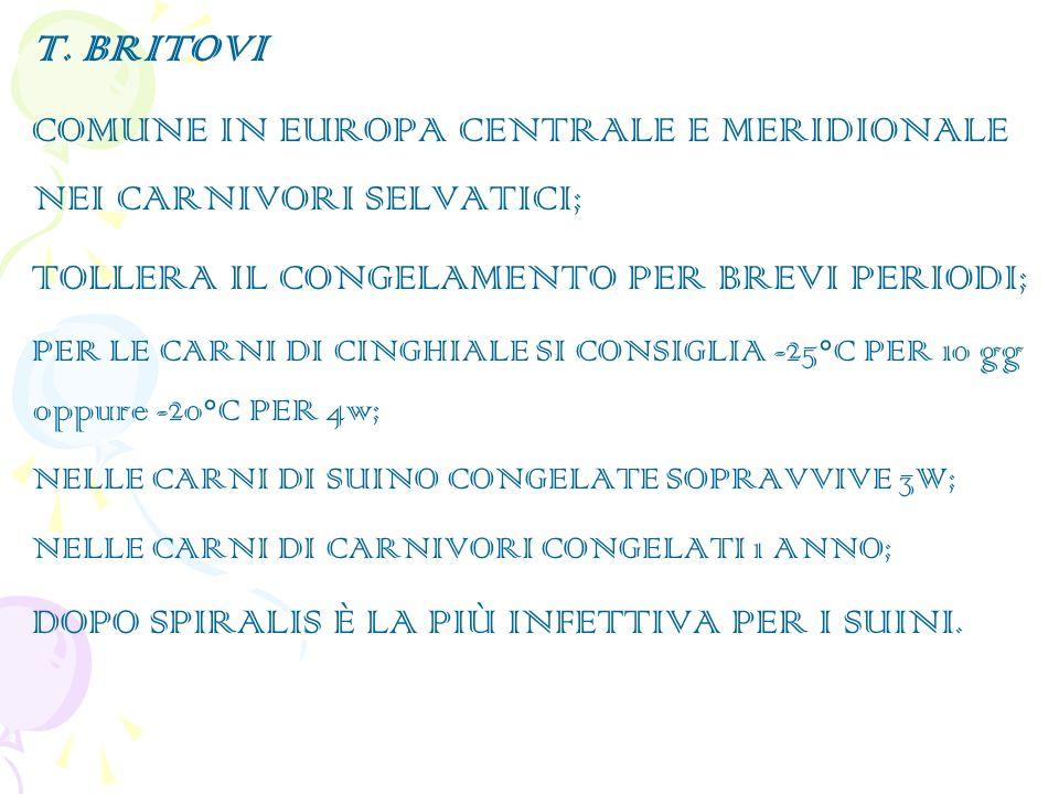 T. BRITOVI COMUNE IN EUROPA CENTRALE E MERIDIONALE NEI CARNIVORI SELVATICI; TOLLERA IL CONGELAMENTO PER BREVI PERIODI; PER LE CARNI DI CINGHIALE SI CO