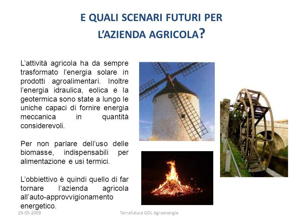 29-05-2009Terrafutura GDL Agroenergie E QUALI SCENARI FUTURI PER LAZIENDA AGRICOLA ? E QUALI SCENARI FUTURI PER LAZIENDA AGRICOLA ? Lattività agricola