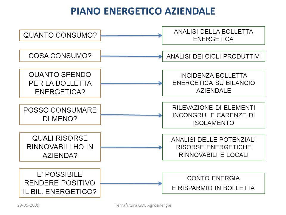 29-05-2009Terrafutura GDL Agroenergie PIANO ENERGETICO AZIENDALE QUANTO CONSUMO? ANALISI DELLA BOLLETTA ENERGETICA COSA CONSUMO? ANALISI DEI CICLI PRO