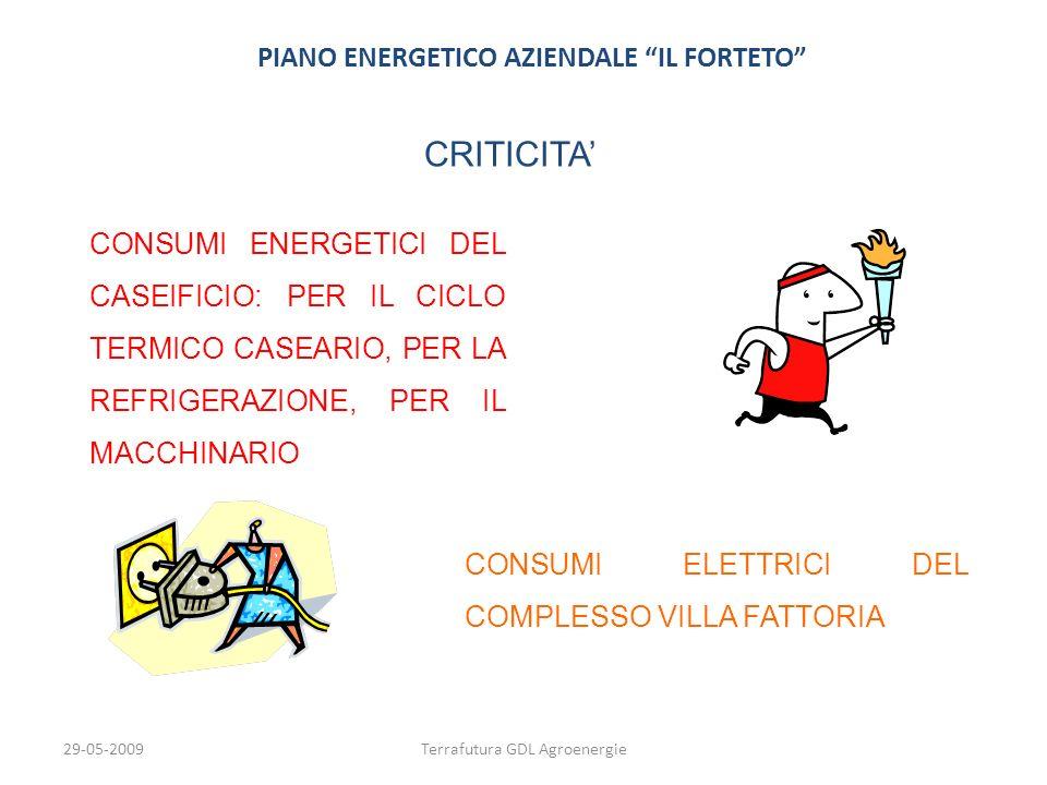 29-05-2009Terrafutura GDL Agroenergie PIANO ENERGETICO AZIENDALE IL FORTETO CRITICITA CONSUMI ENERGETICI DEL CASEIFICIO: PER IL CICLO TERMICO CASEARIO