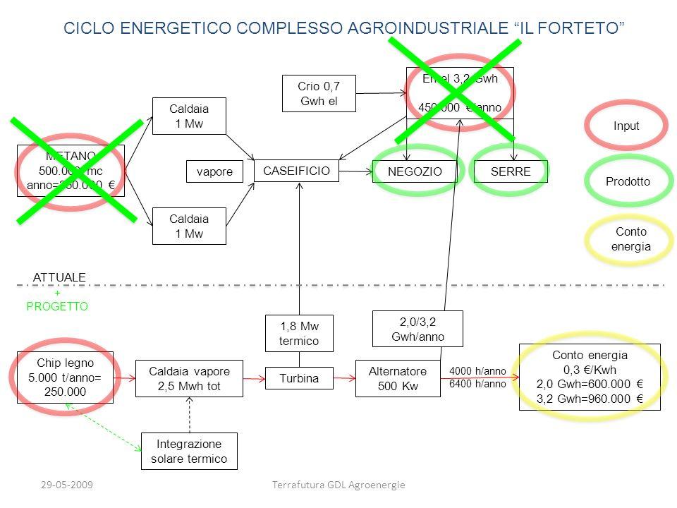 29-05-2009Terrafutura GDL Agroenergie Caldaia 1 Mw Caldaia 1 Mw vapore CASEIFICIO METANO 500.000 mc anno=350.000 En el 3,2 Gwh = 450.000 /anno Crio 0,