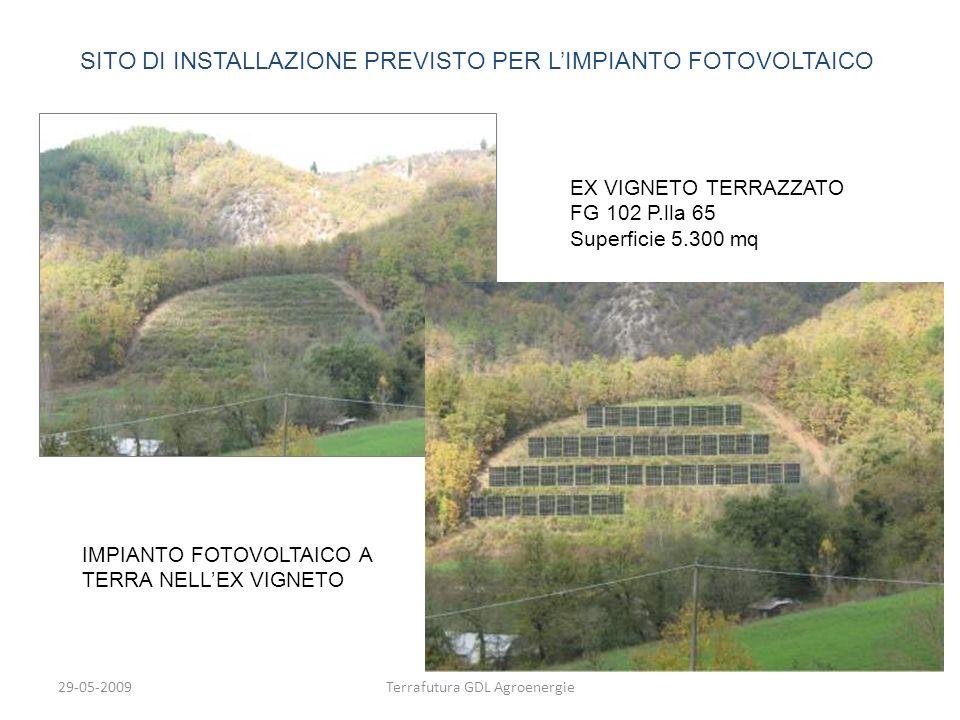 29-05-2009Terrafutura GDL Agroenergie SITO DI INSTALLAZIONE PREVISTO PER LIMPIANTO FOTOVOLTAICO EX VIGNETO TERRAZZATO FG 102 P.lla 65 Superficie 5.300