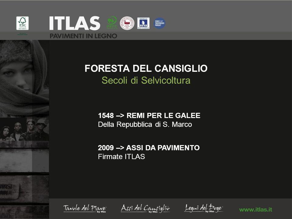 FORESTA DEL CANSIGLIO Secoli di Selvicoltura 1548 –> REMI PER LE GALEE Della Repubblica di S.