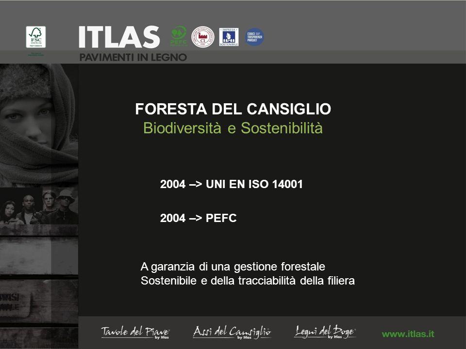 FORESTA DEL CANSIGLIO Biodiversità e Sostenibilità 2004 –> UNI EN ISO 14001 2004 –> PEFC A garanzia di una gestione forestale Sostenibile e della tracciabilità della filiera