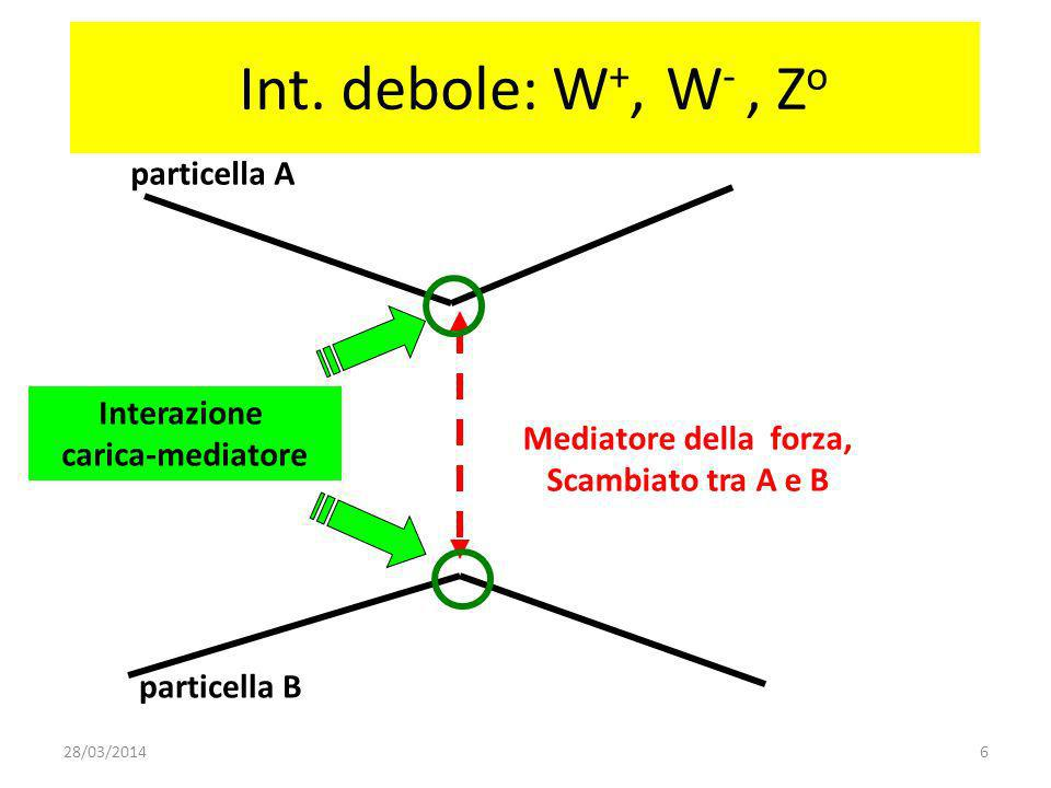 Esempio: decadimento Beta Quark dQuark u elettrone anti-neutrino W-W- neutrone protone La particella W vive per un tempo brevissimo: < 10 -23 s.
