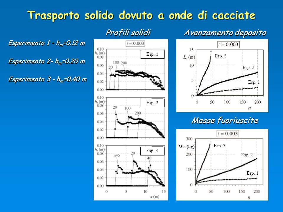 Trasporto solido dovuto a onde di cacciate Profili solidi Esperimento 1 – h m =0.12 m Esperimento 2- h m =0.20 m Esperimento 3 - h m =0.40 m Esp. 1 Av
