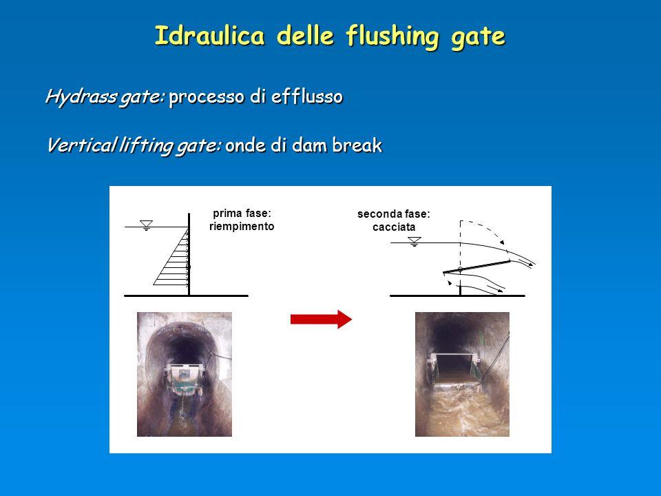 Idraulica delle flushing gate Hydrass gate: processo di efflusso Vertical lifting gate: onde di dam break