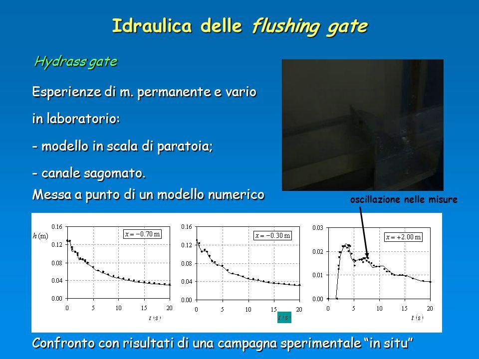Idraulica delle flushing gate Esperienze di m. permanente e vario in laboratorio: - modello in scala di paratoia; - canale sagomato. Hydrass gate Mess