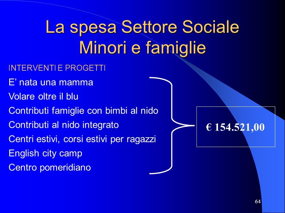 64 La spesa Settore Sociale Minori e famiglie INTERVENTI E PROGETTI E nata una mamma Volare oltre il blu Contributi famiglie con bimbi al nido Contrib