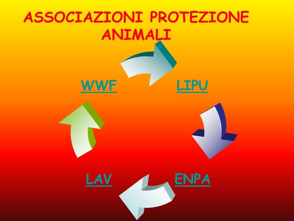 LIPU ENPALAV WWF ASSOCIAZIONI PROTEZIONE ANIMALI