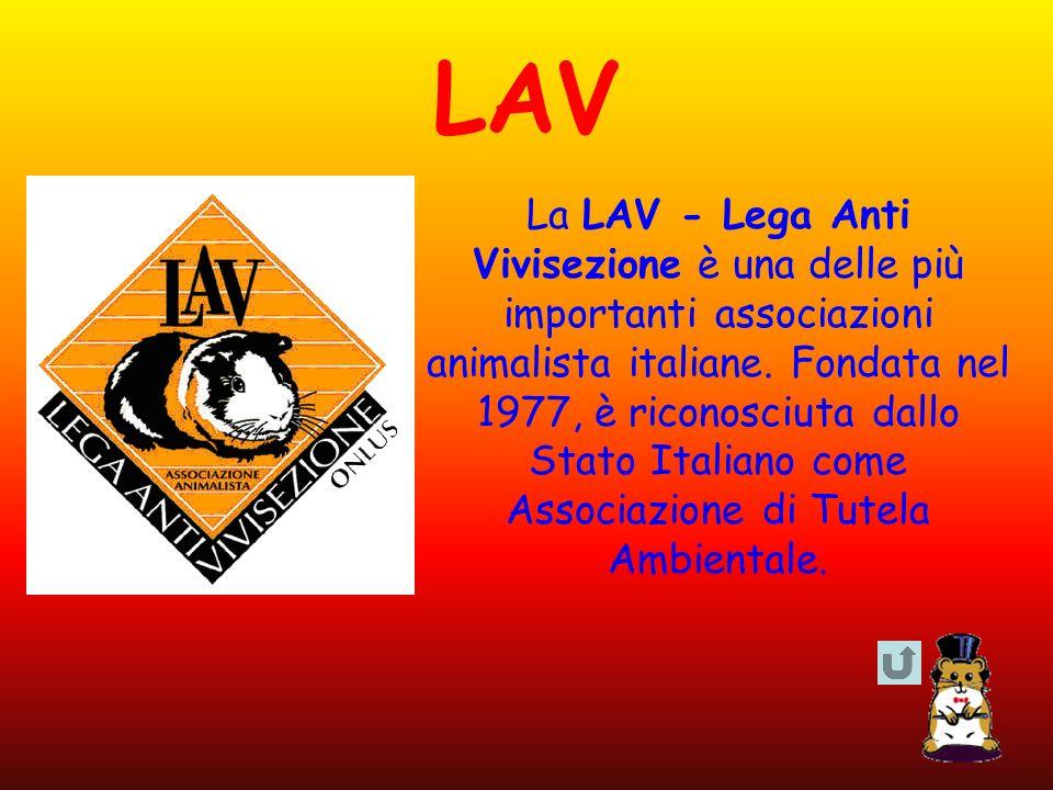 LAV La LAV - Lega Anti Vivisezione è una delle più importanti associazioni animalista italiane. Fondata nel 1977, è riconosciuta dallo Stato Italiano