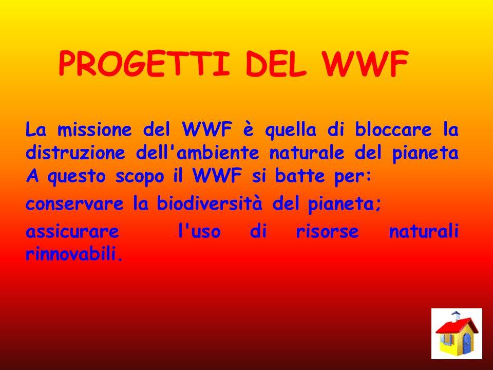 PROGETTI DEL WWF La missione del WWF è quella di bloccare la distruzione dell'ambiente naturale del pianeta A questo scopo il WWF si batte per: conser