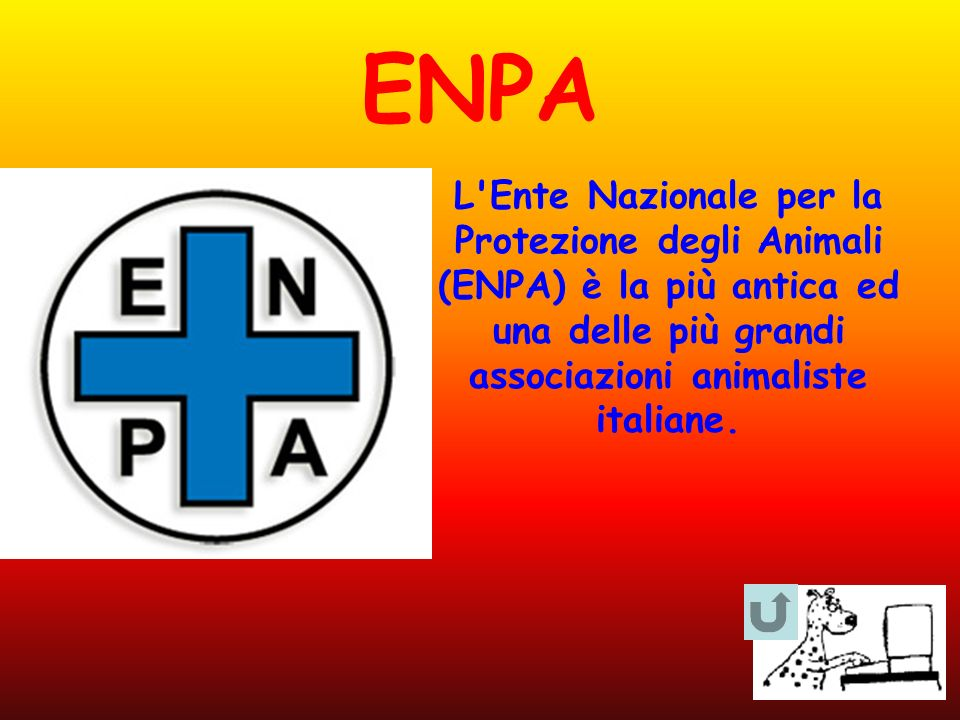 ENPA L'Ente Nazionale per la Protezione degli Animali (ENPA) è la più antica ed una delle più grandi associazioni animaliste italiane.