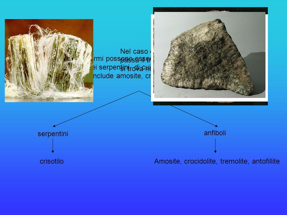 I minerali asbestiformi possono essere suddivisi in due categorie principali: quella dei serpentini, di cui fa parte il crisotilo, e quella degli anfi