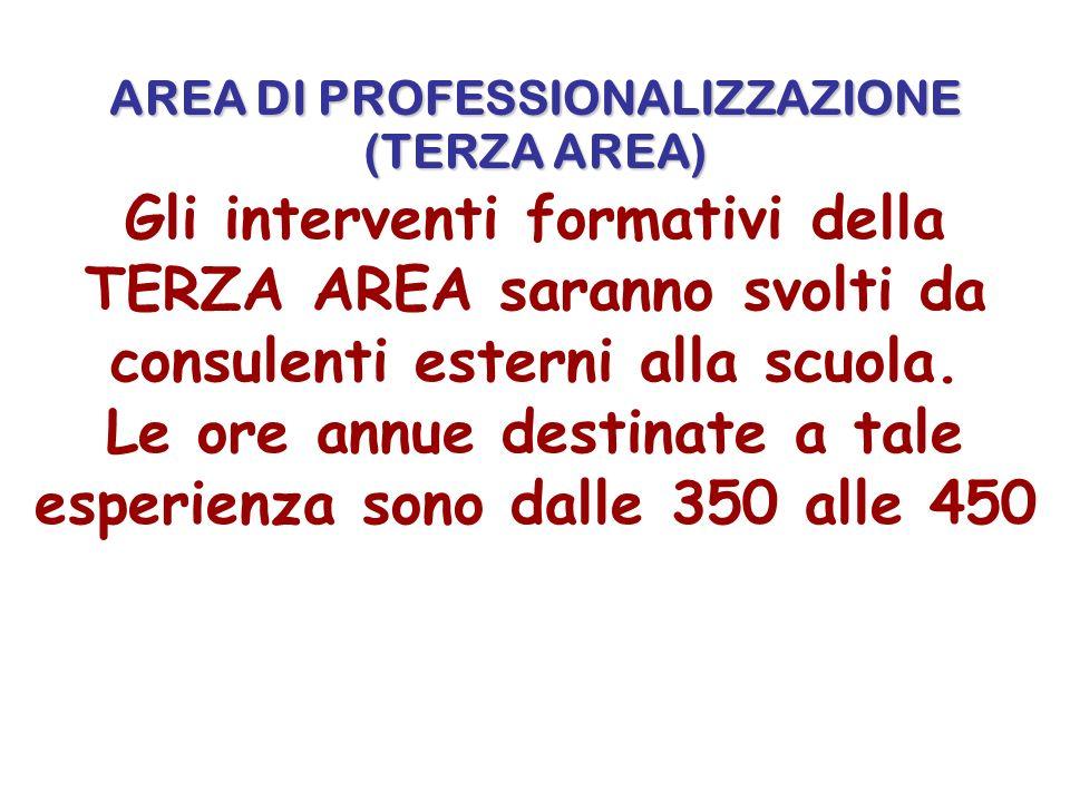 AREA DI PROFESSIONALIZZAZIONE (TERZA AREA) Gli interventi formativi della TERZA AREA saranno svolti da consulenti esterni alla scuola.