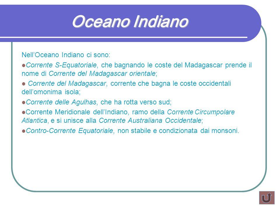 Oceano Indiano NellOceano Indiano ci sono: Corrente S-Equatoriale, che bagnando le coste del Madagascar prende il nome di Corrente del Madagascar orie