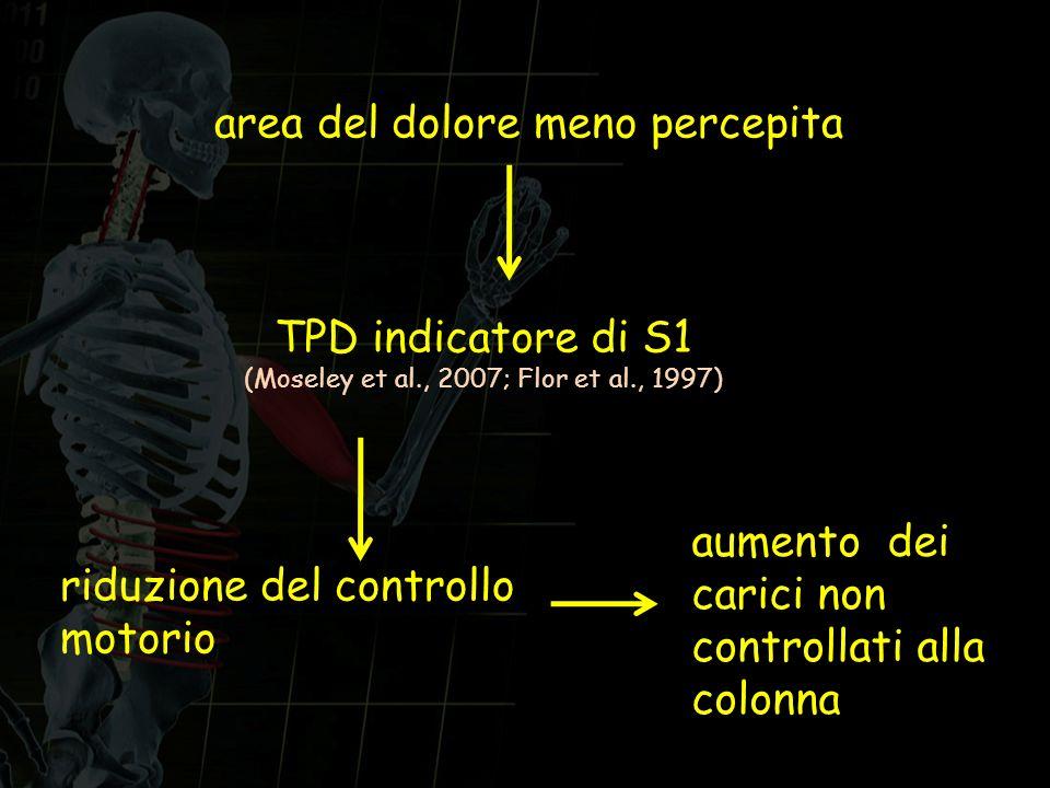 area del dolore meno percepita riduzione del controllo motorio TPD indicatore di S1 (Moseley et al., 2007; Flor et al., 1997) aumento dei carici non c