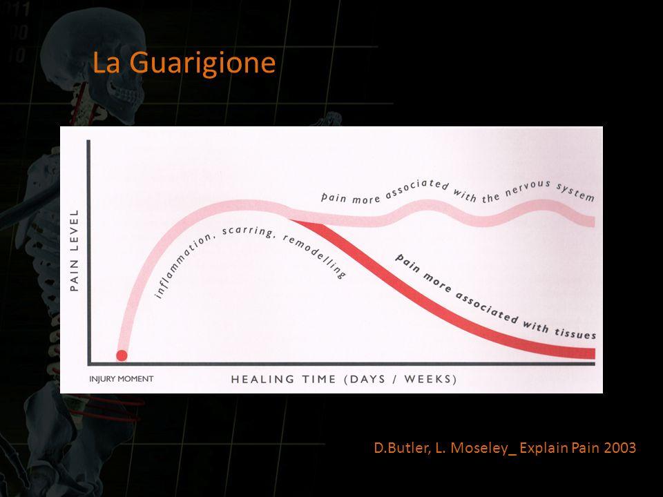 La Guarigione D.Butler, L. Moseley_ Explain Pain 2003
