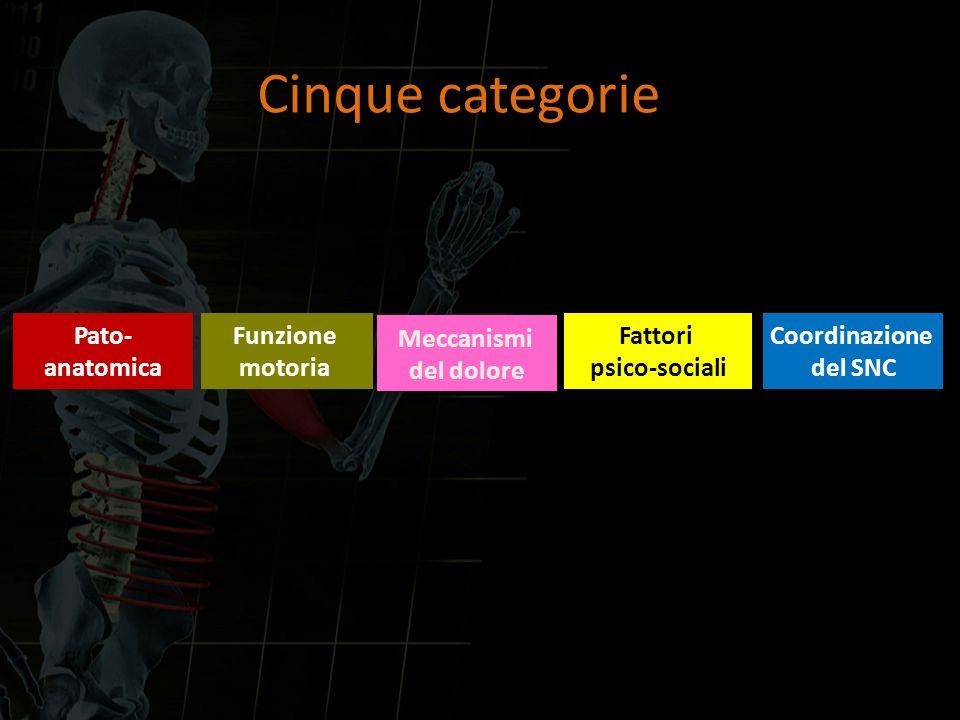 Pato- anatomica Funzione motoria Fattori psico-sociali Meccanismi del dolore Coordinazione del SNC Cinque categorie