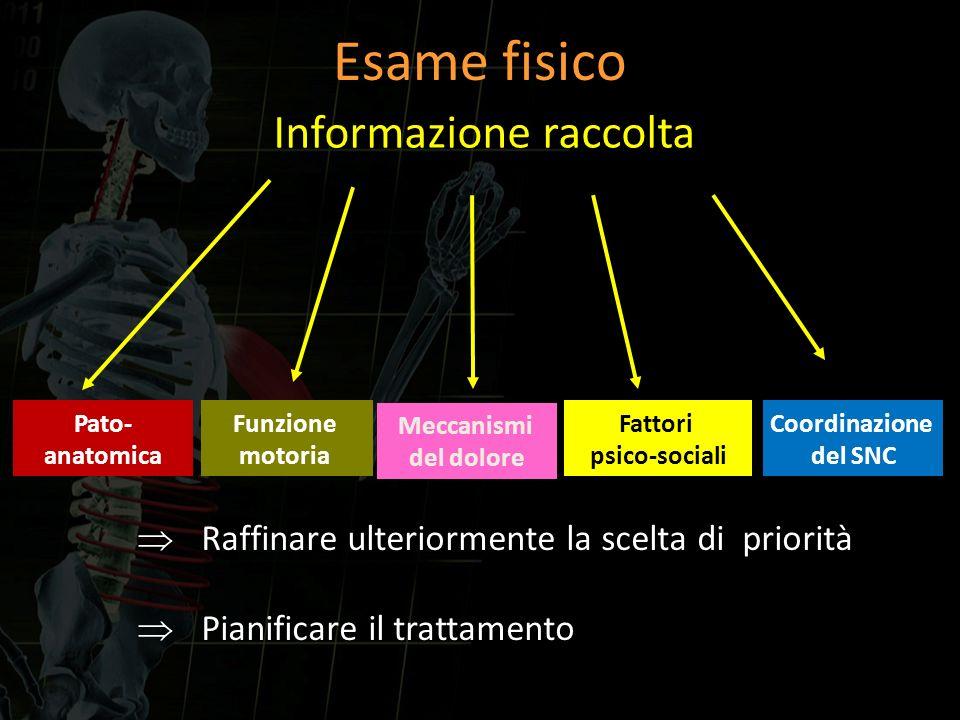Informazione raccolta Pato- anatomica Funzione motoria Fattori psico-sociali Meccanismi del dolore Coordinazione del SNC Esame fisico Raffinare ulteri