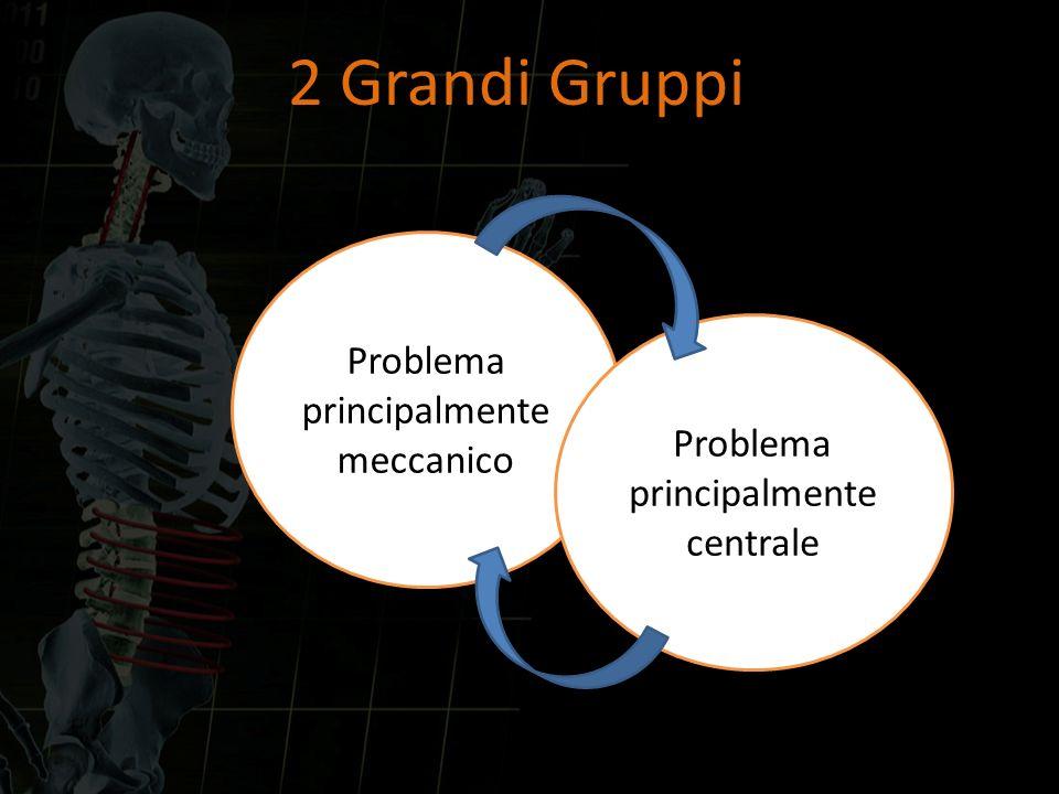 Problema principalmente meccanico Problema principalmente centrale 2 Grandi Gruppi