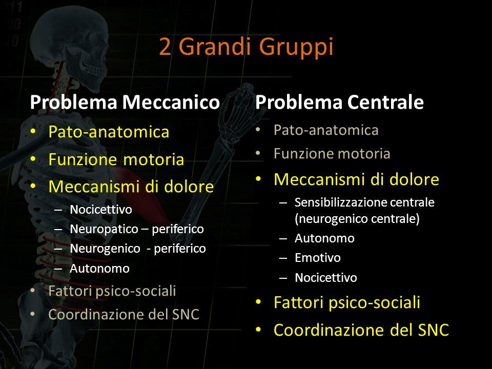 Problema Meccanico Pato-anatomica Funzione motoria Meccanismi di dolore – Nocicettivo – Neuropatico – periferico – Neurogenico - periferico – Autonomo
