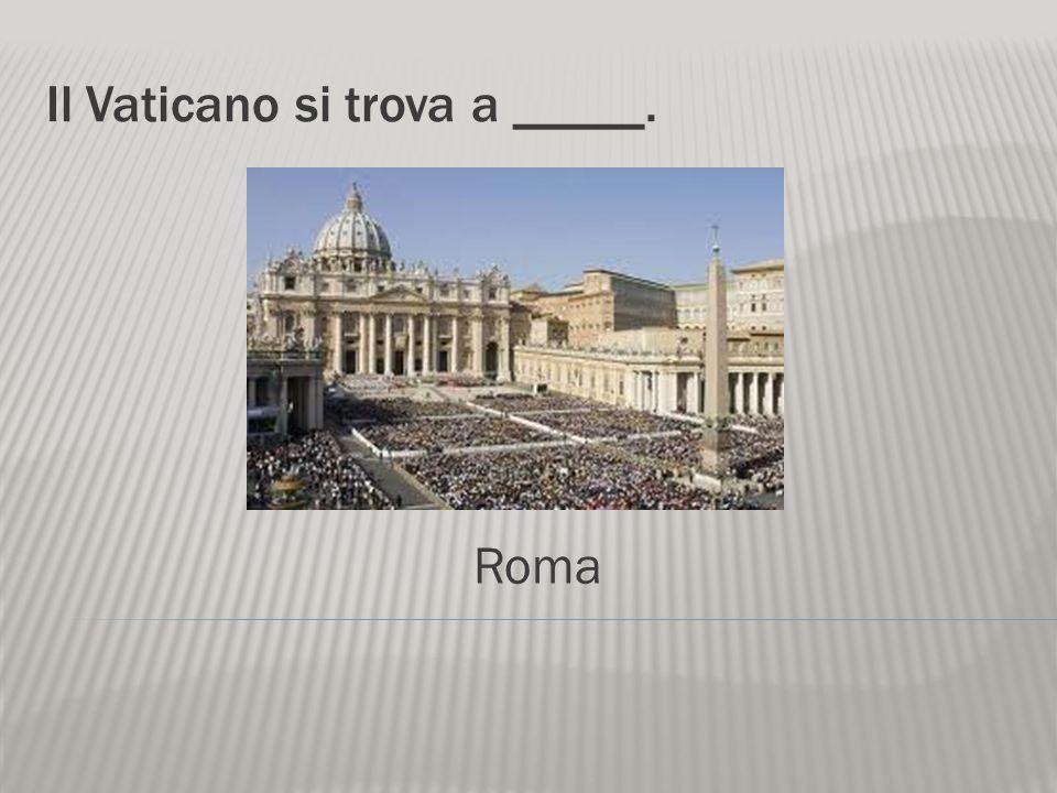 Per vedere il Papa, andiamo al _____. Vaticano Il Papa Benedetto XVI