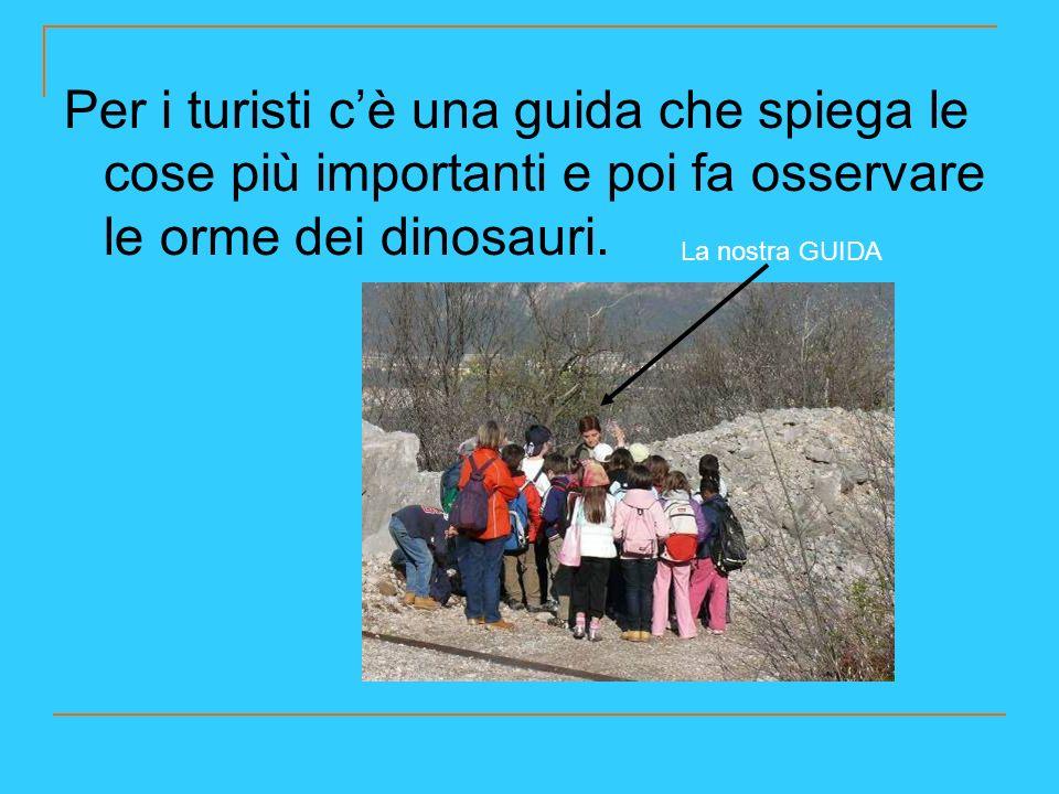Per i turisti cè una guida che spiega le cose più importanti e poi fa osservare le orme dei dinosauri. La nostra GUIDA