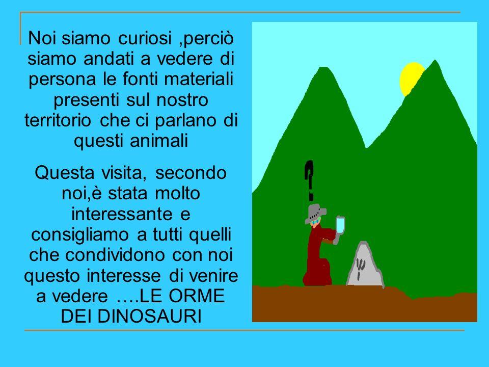 Soltanto una ventina di anni fa alcuni studiosi hanno capito che erano impronte di dinosauro.