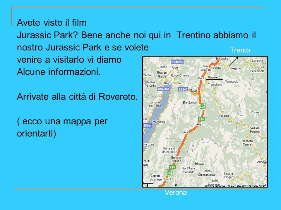 Da Rovereto si raggiunge la località di Lizzana, poi utilizzando una strada che porta in montagna ( strada degli Artiglieri) si arriva al sito paleontologico sopra allabitato, dove è possibile vedere le orme dei dinosauri.