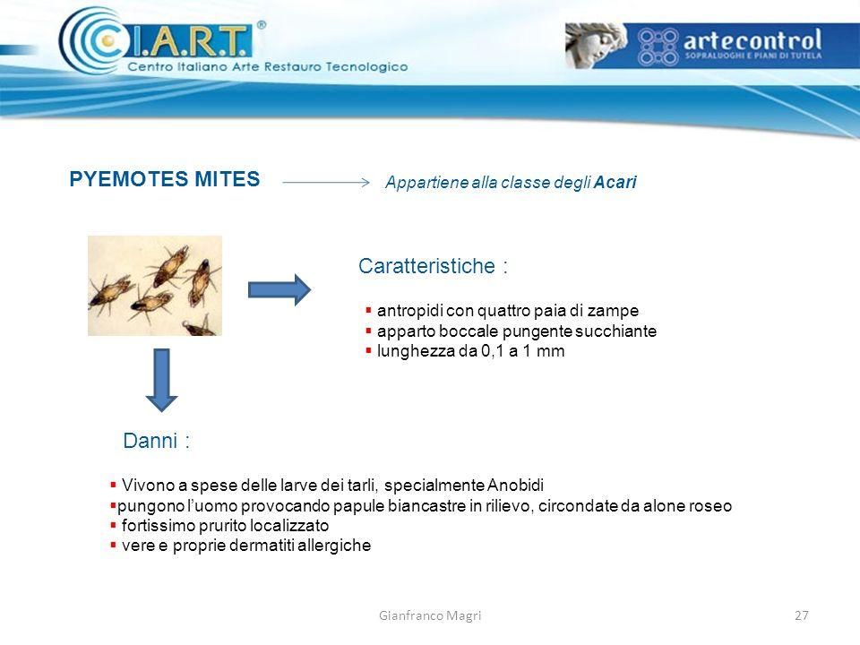 Gianfranco Magri27 PYEMOTES MITES Appartiene alla classe degli Acari Caratteristiche : Danni : antropidi con quattro paia di zampe apparto boccale pun