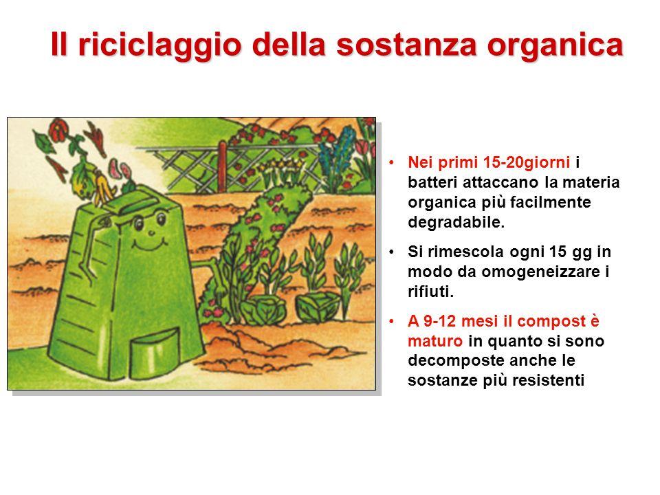 Il riciclaggio della sostanza organica Nei primi 15-20giorni i batteri attaccano la materia organica più facilmente degradabile. Si rimescola ogni 15