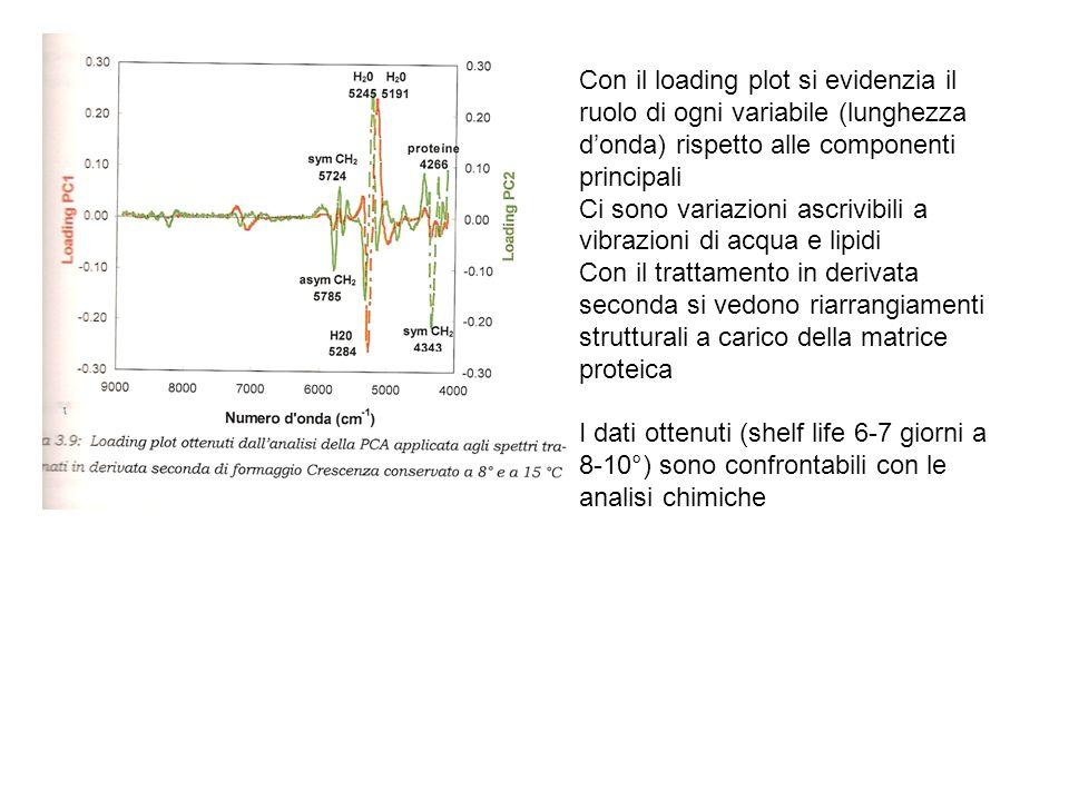 Con il loading plot si evidenzia il ruolo di ogni variabile (lunghezza donda) rispetto alle componenti principali Ci sono variazioni ascrivibili a vib