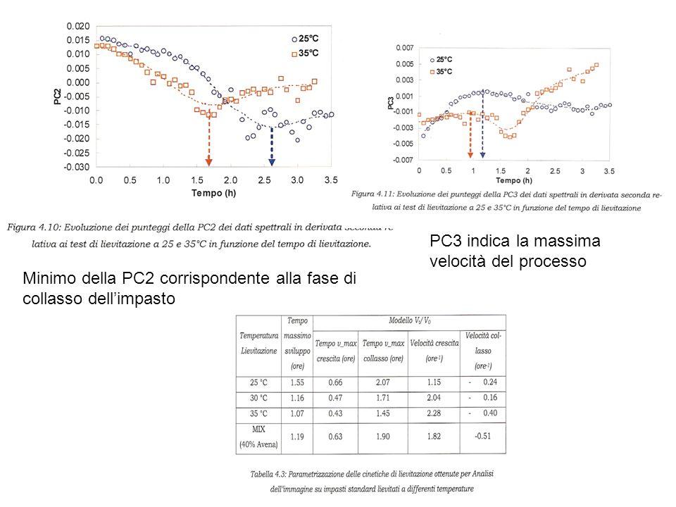 Minimo della PC2 corrispondente alla fase di collasso dellimpasto PC3 indica la massima velocità del processo