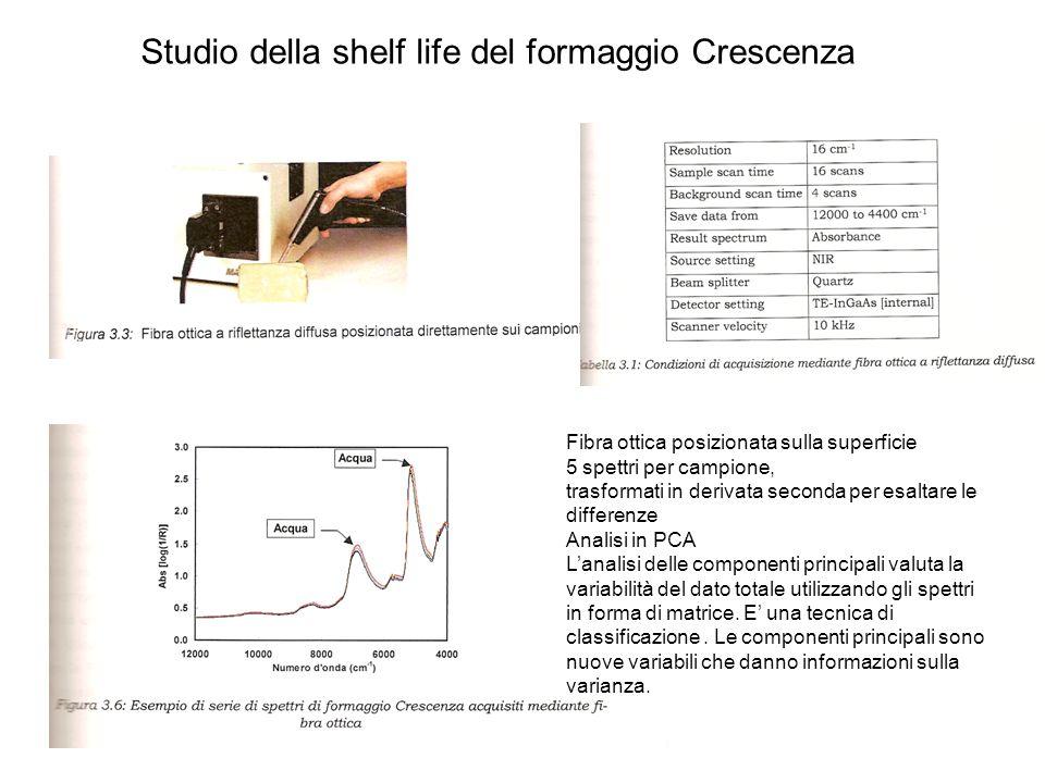 Studio della shelf life del formaggio Crescenza Fibra ottica posizionata sulla superficie 5 spettri per campione, trasformati in derivata seconda per