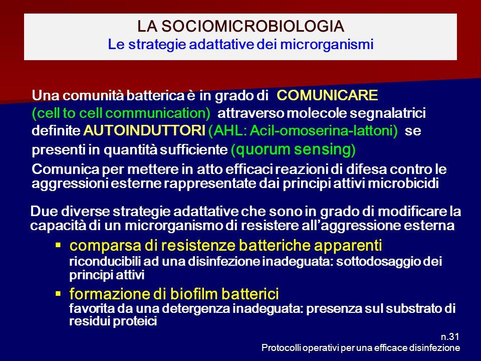 n.31 Protocolli operativi per una efficace disinfezione LA SOCIOMICROBIOLOGIA Le strategie adattative dei microrganismi Una comunità batterica è in gr