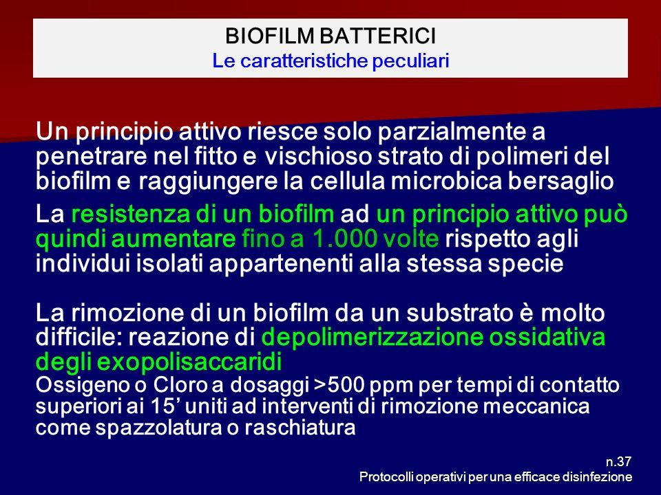 n.37 Protocolli operativi per una efficace disinfezione BIOFILM BATTERICI Le caratteristiche peculiari Un principio attivo riesce solo parzialmente a