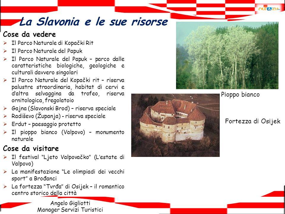 Angelo Gigliotti Manager Servizi Turistici La Slavonia e le sue risorse Cose da vedere Il Parco Naturale di Kopački Rit Il Parco Naturale del Papuk Il