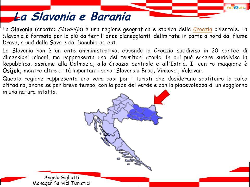 Angelo Gigliotti Manager Servizi Turistici La Slavonia e Barania La Slavonia (croato: Slavonija) è una regione geografica e storica della Croazia orie