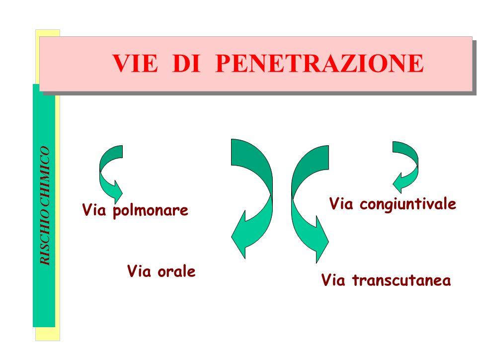Definizioni Via polmonare Via congiuntivale Via orale Via transcutanea VIE DI PENETRAZIONE