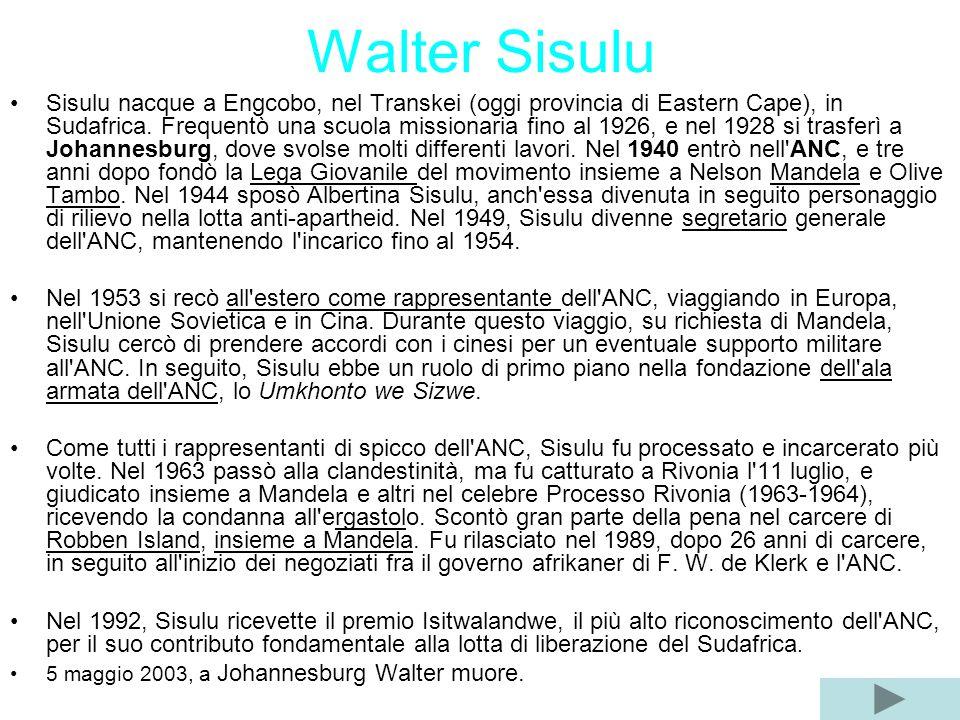 Walter Sisulu Sisulu nacque a Engcobo, nel Transkei (oggi provincia di Eastern Cape), in Sudafrica. Frequentò una scuola missionaria fino al 1926, e n